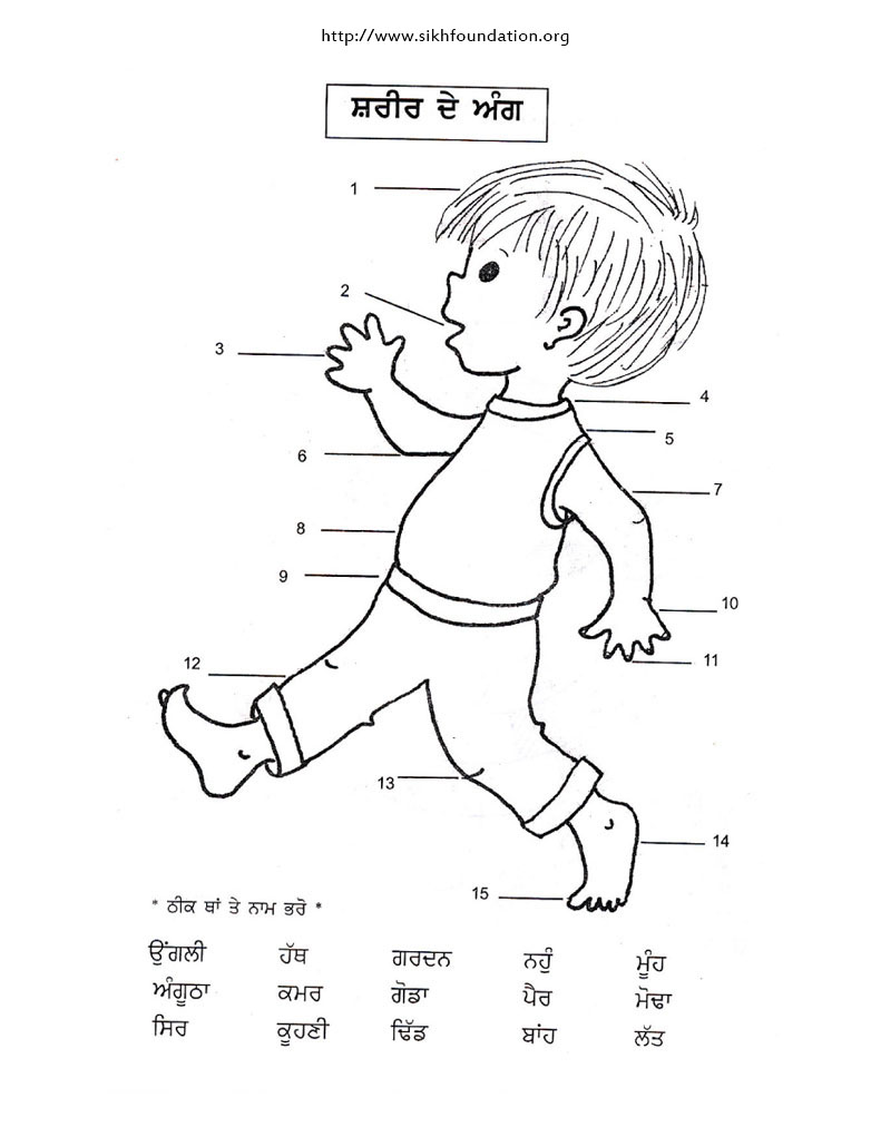 Punjabi Activity Sheet Name It Body Parts The Sikh Foundation