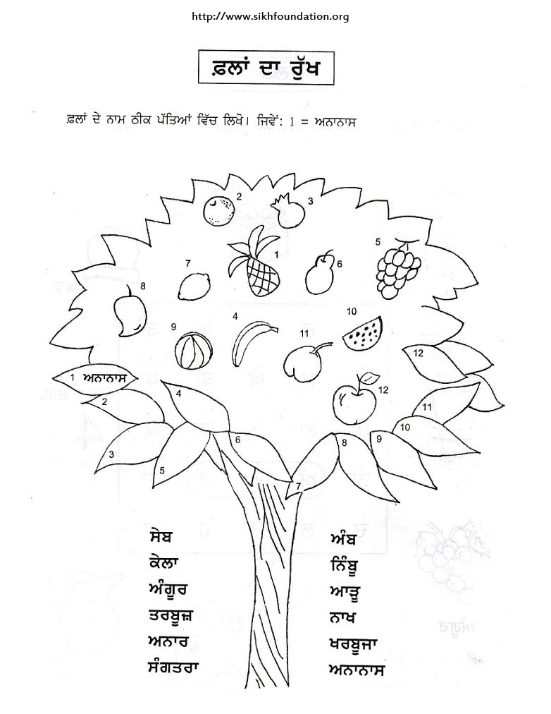 The-Sikh-Foundation-punjabi-activity-sheet-name-it-fruits