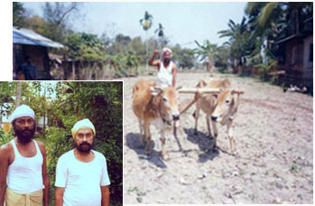 Asomiya Sikh farmer of Assam