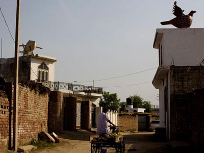 Wealthy Punjabis adorned the roofs of their homes with statues as a  sign of prosperity. Atop the buildin on the left is a statue of a plane. On the building to the right, a winged bird.