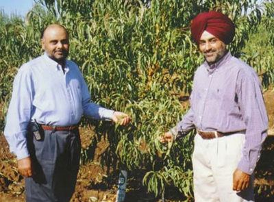 Sikh farmers in merced ca pic courtesy Dr JS Kang