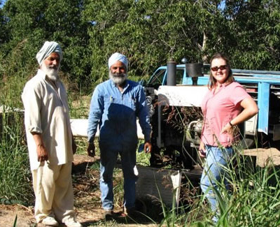 Sikh farmer pic courtesy TS Sibia